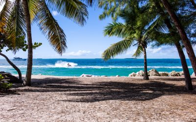 Working Holiday – Should you consider it?